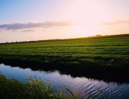 Nieuwe openstelling van Noord-Hollandse regeling uitvoering van LEADER-projecten
